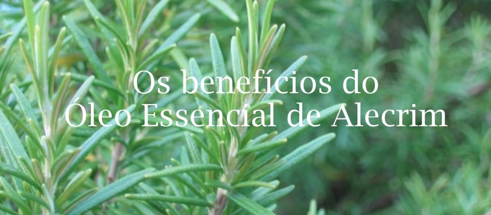 Os benefícios do Óleo Essencial de Alecrim