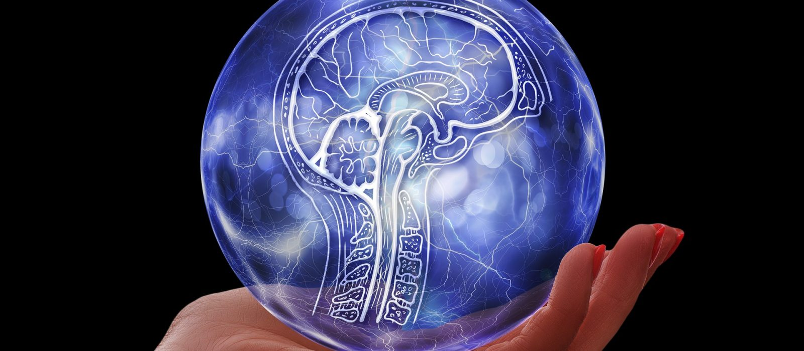 Entenda a Conexão Cérebro – Intestino